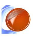 90 mm agar plates